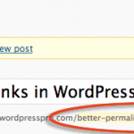 Set Clean URL Permalinks in WordPress