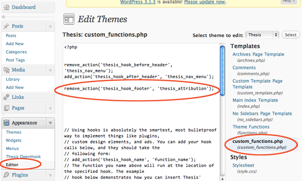 Add Custom Footer To Thesis Theme