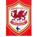 cardiff city premier league logo 2013 / 2014, twitter hash tag